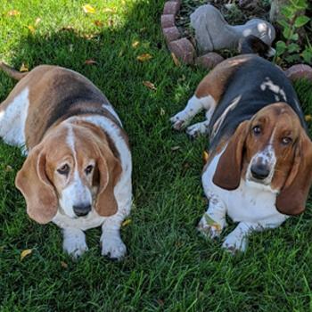 Patsy Jo and Dolly Rae